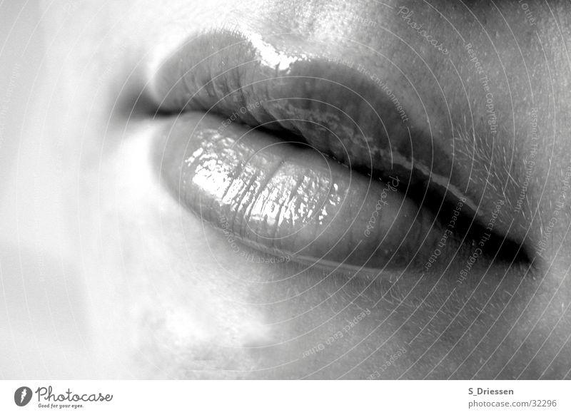 Lippen Detailaufnahme Lippenstift feminin Frau Erwachsene Mund glänzend schwarz weiß Lipgloss Glamour Mundwinkel voll