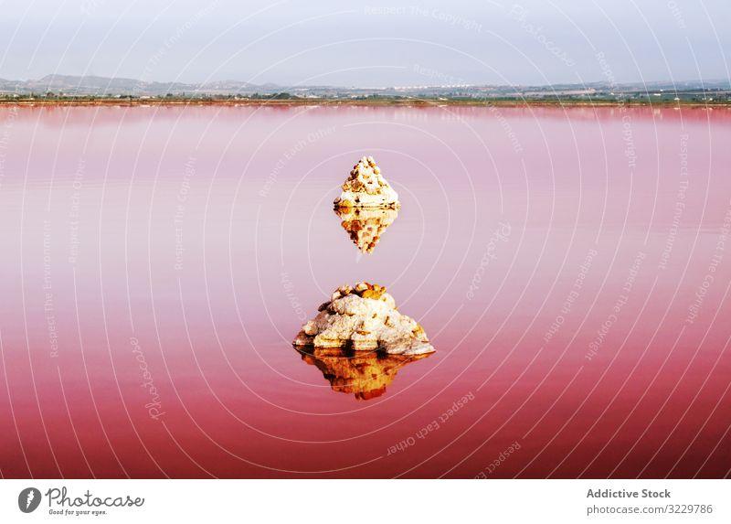 Rosa See mit sich im Wasser spiegelnden Steinen rosa Landschaft natürlich Schönheit Felsen Lagune reisen rot Ausflugsziel Tourismus Reise ungewöhnlich Salz Ufer