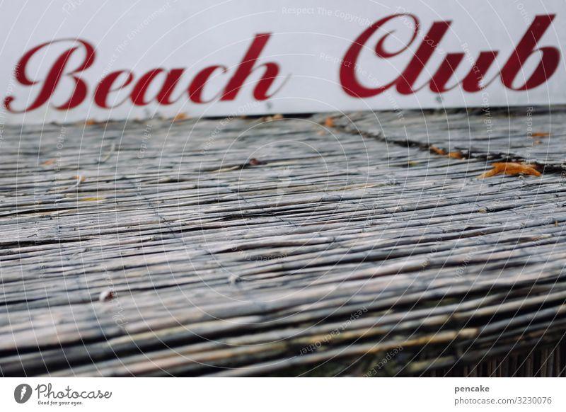 geschriebenes | willkommen im club! Ferien & Urlaub & Reisen Freude Strand Lifestyle Party Schwimmen & Baden Design Schriftzeichen Schilder & Markierungen