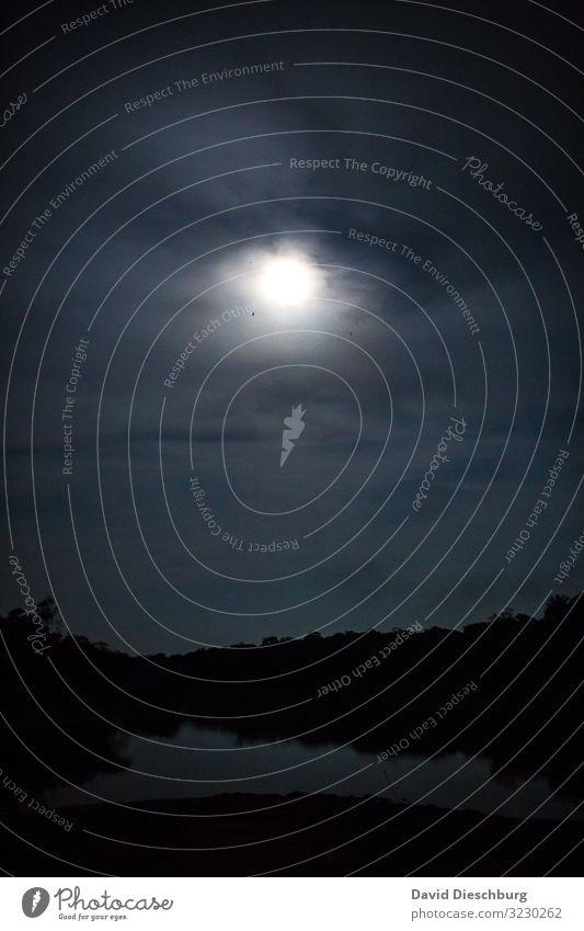 Nachts auf dem Rio Negro Ferien & Urlaub & Reisen Natur Landschaft Wasser Himmel Wolken Mond Vollmond Baum Urwald Flussufer Moor Sumpf Angst Todesangst