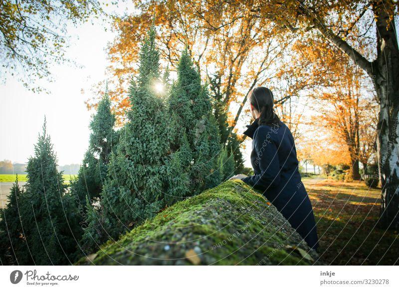 Friedhofsmauer Lifestyle Freizeit & Hobby Junge Frau Jugendliche Erwachsene Leben 1 Mensch 18-30 Jahre 30-45 Jahre Natur Landschaft Sonne Sonnenaufgang