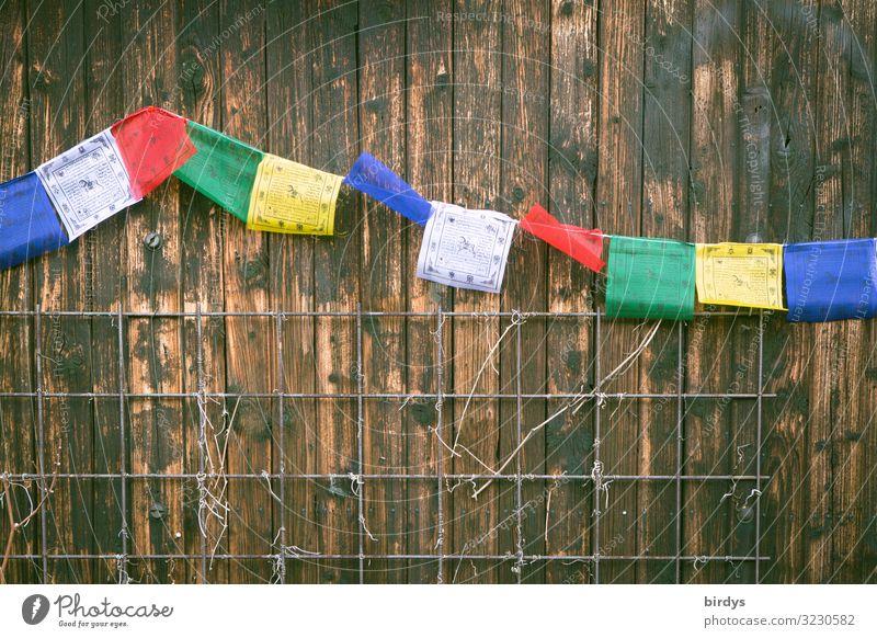 buddhistische Fähnchen Mauer Wand Holzwand Gebetsfahnen Buddhismus Zeichen authentisch frei Freundlichkeit positiv blau braun gelb grün rot weiß Vertrauen