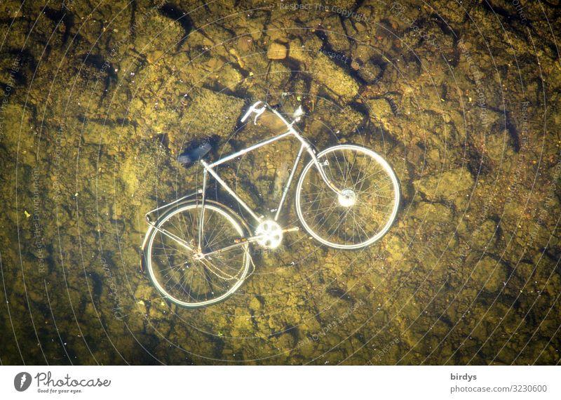 verloren| am Grund gefunden Fahrrad Wasser See Fluss Flussgrund Stein Metall liegen authentisch kaputt nass trist braun grün silber weiß Ärger