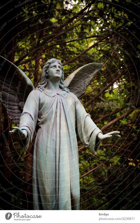 Silenzio, Silenzio 1 Mensch 18-30 Jahre Jugendliche Erwachsene 30-45 Jahre Skulptur Natur Sommer Baum Park Friedhof Engel stehen authentisch schön positiv