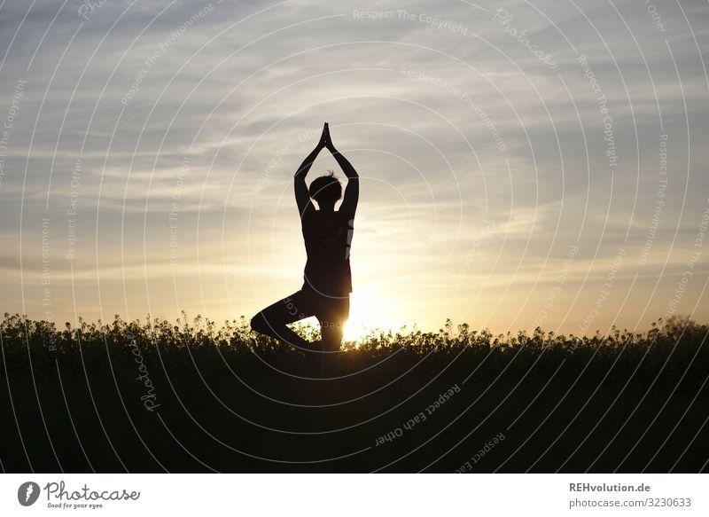 Frau macht Yoga bei Sonnenuntergang Natur Landschaft Sonnenlicht Gegenlicht Silhouette entspannung Ruhe stille achtsam Lifestyle Sport sportlich Mensch