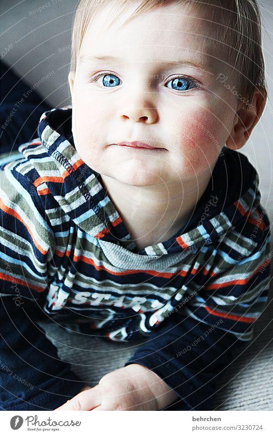 . 0-12 Monate Liebe niedlich Farbfoto Porträt Junge Gesicht Familie & Verwandtschaft Innenaufnahme Kindheit Baby blaue augen staunen Neugier beschützen
