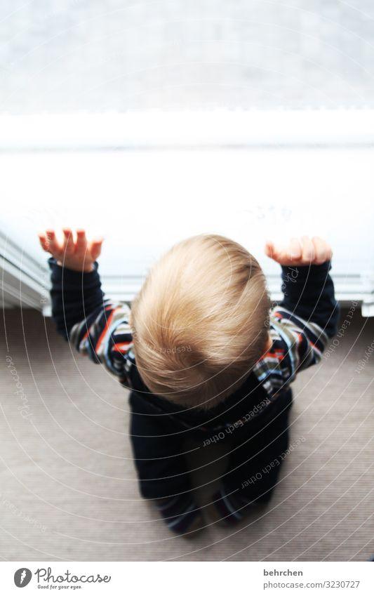 erwartungsvoll Kind Kleinkind Junge Eltern Erwachsene Familie & Verwandtschaft Kindheit Kopf Haare & Frisuren Hand Finger 1-3 Jahre Liebe geduldig Ausdauer
