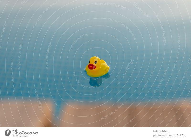 Badeente im Pool Gesundheit Wellness Wohlgefühl Erholung ruhig Schwimmbad Schwimmen & Baden Wassersport Kunststoff Zeichen wählen beobachten schön Steg
