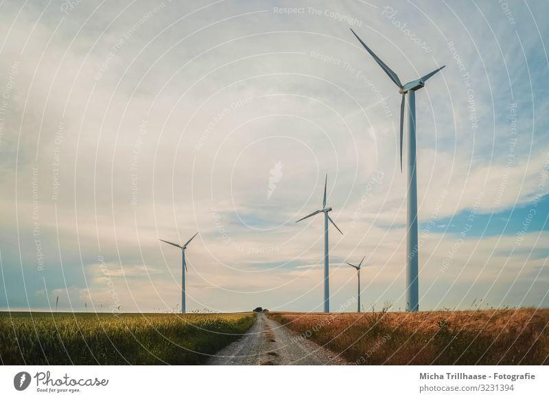 Windräder am Feld Landwirtschaft Forstwirtschaft Energiewirtschaft Technik & Technologie Fortschritt Zukunft Erneuerbare Energie Windkraftanlage Natur