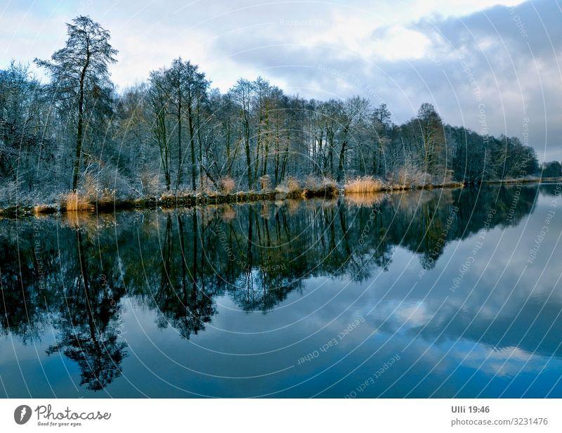 Am Oranienburger Kanal. blau Stadt grün Wasser Landschaft Baum Wald Herbst natürlich orange Stimmung Wetter ästhetisch authentisch Romantik Klima