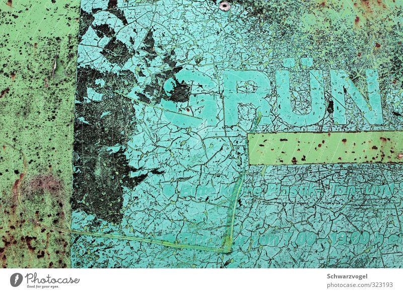 Grün!? Stahl alt kaputt retro trashig trist grün Recycling Recyclingcontainer abblättern Verfall Lack ab Farbfoto