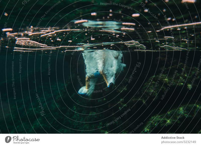 Taucher, der von im Wasser springenden Blasen umgeben ist schwimmen unter Wasser Schaumblase Feiertag spielerisch aktiv Schwimmer MEER Energie Aktion Bewegung