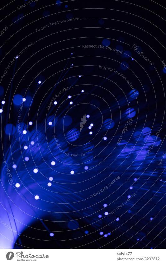 blue light Nachtleben Entertainment Party Veranstaltung Club Disco Silvester u. Neujahr leuchten blau schwarz Illumination Glasfaserlampe strahlenförmig