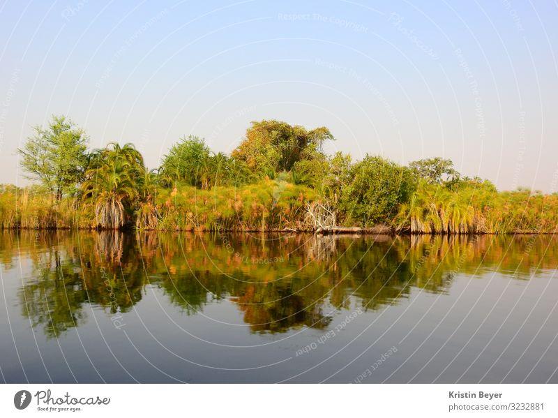 Spiegelungen am Okavango Delta Ferien & Urlaub & Reisen Ferne Expedition Sommer Sommerurlaub Natur Landschaft Wasser Wolkenloser Himmel Sonnenlicht