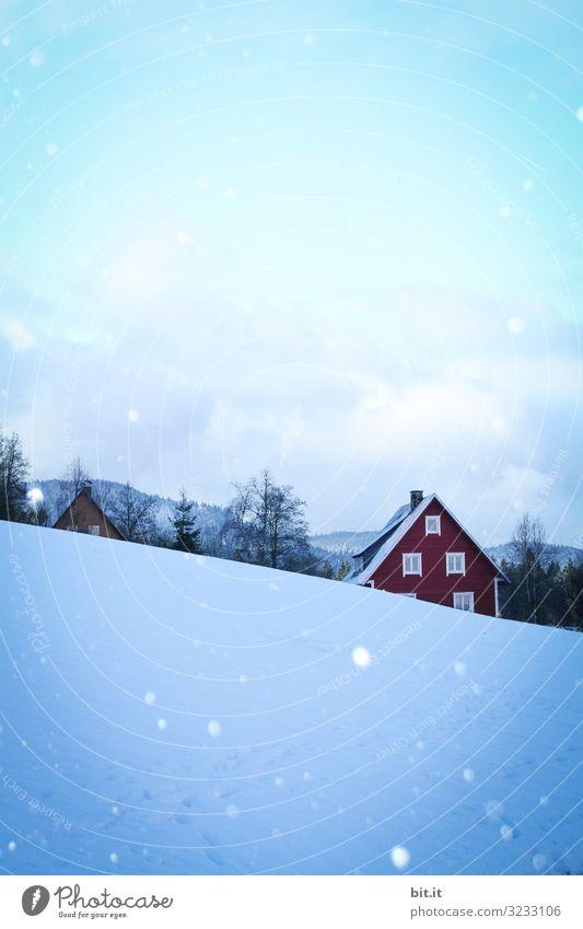 Schnee im Schwarzwald Himmel Ferien & Urlaub & Reisen Natur Weihnachten & Advent Landschaft Baum Haus Einsamkeit Wald Winter Berge u. Gebirge Umwelt Tourismus