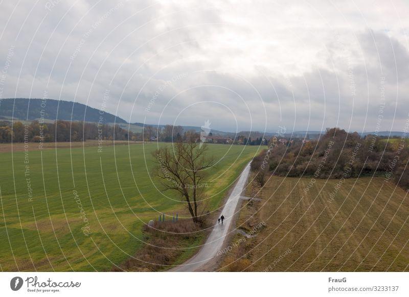 Vater und Sohn gehen spazieren Landschaft Baum Sträucher Felder Bergkette Ortschaft Dorf Weg Wege & Pfade Mann Junge Zusammensein spazierengehen Herbst trüb