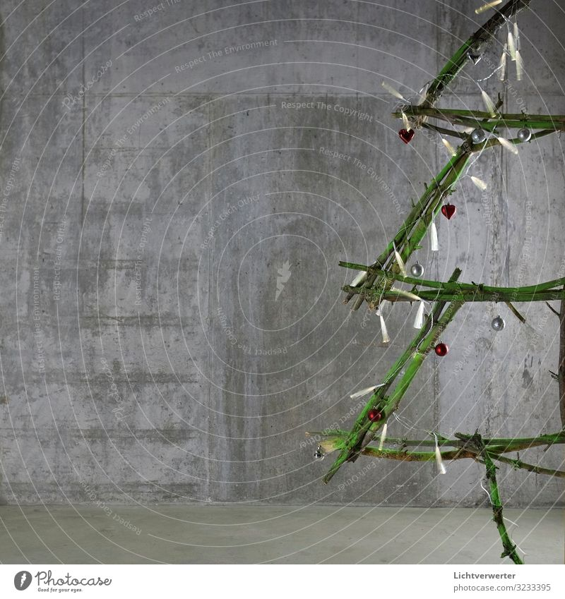 The Christmas Tree Weihnachten & Advent grün Baum Gefühle Feste & Feiern Wohnung Dekoration & Verzierung Fröhlichkeit Coolness entdecken Duft Gastfreundschaft