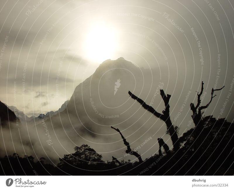 mystic mountain Nebel Neuseeland Berge u. Gebirge Sonne