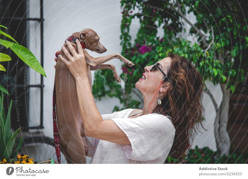 Frau küsst Windhund, während sie sich auf der Straße entspannt Hund Kuss Zusammensein kuscheln Haustier Umarmung Umarmen Blumenbeet Marbella