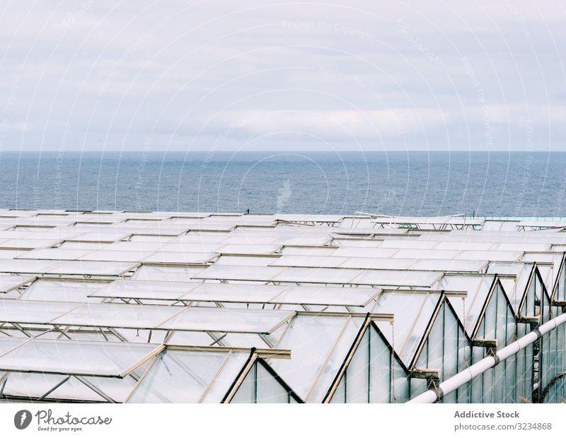 Glasgewächshausdächer bei bedecktem Himmel Gewächshaus Dach Bauernhof ländlich Business Garten Arbeit Anlaufstelle Gartenbau Polycarbonat Konstruktion