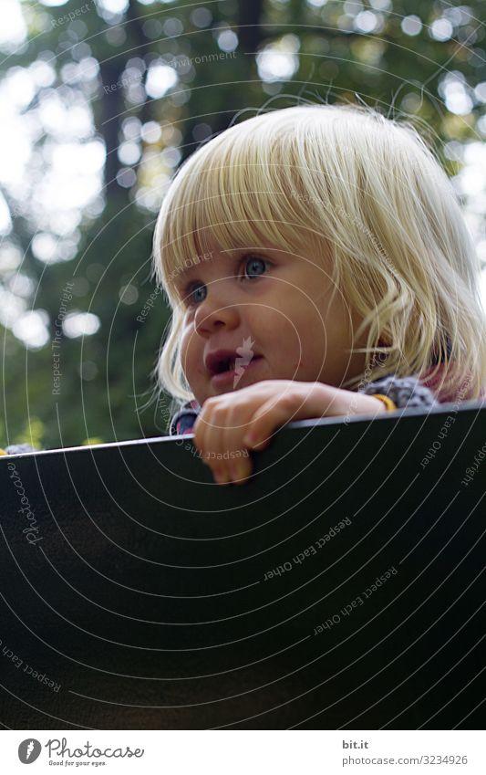 weitsichtig l Mädchen schaut in die Welt Mensch feminin Kind Kleinkind Kindheit Umwelt Natur Freude Glück Fröhlichkeit Zufriedenheit Lebensfreude Blick Aussicht
