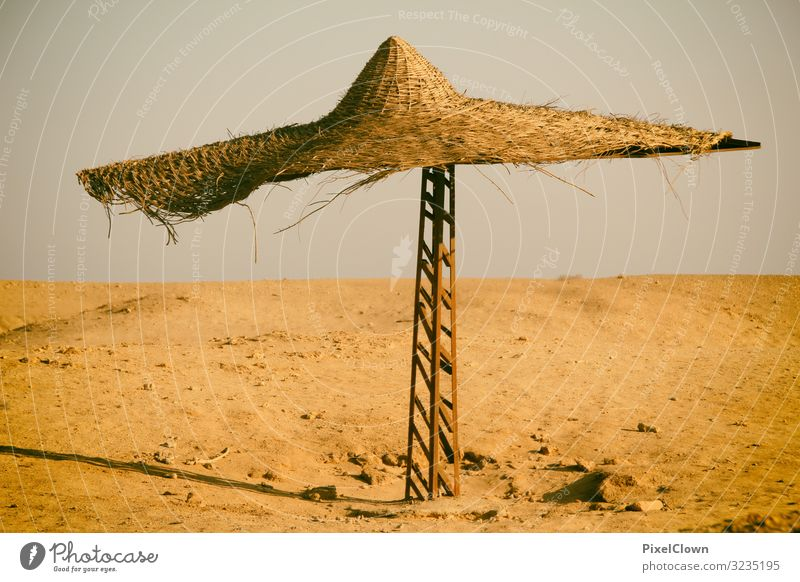 Single Urlaub Ferien & Urlaub & Reisen schön Landschaft Freude Ferne Lifestyle gelb Umwelt Tourismus Freiheit Stimmung Ausflug verrückt Wüste exotisch