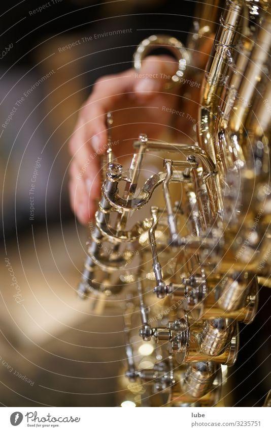 Der Tubaspieler Kunst Künstler Musik Musik hören Konzert Bühne Musiker Orchester Spielsucht Blasmusik Musikinstrument blechbläser Kontrabass Blaskapelle