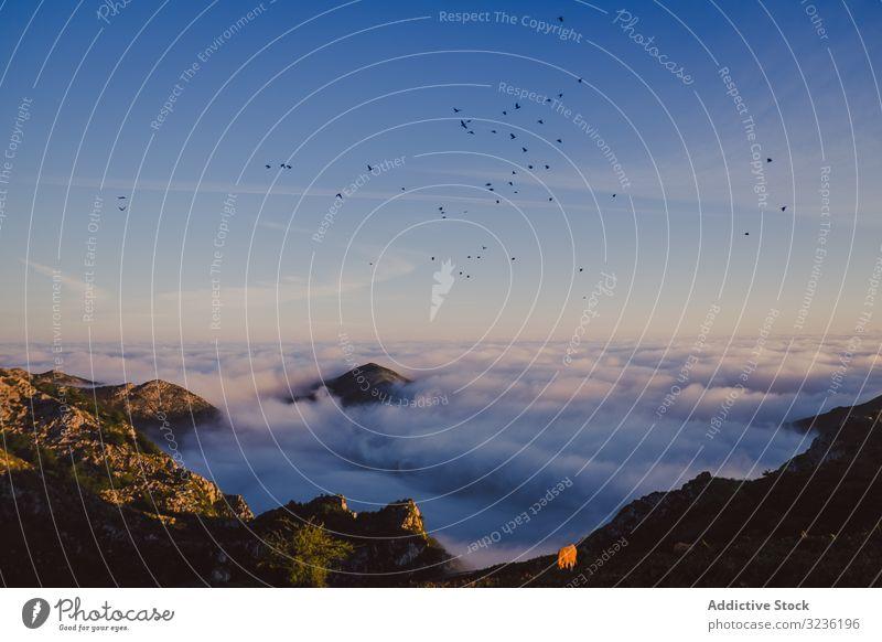 Wunderschöne Aussicht auf blauen Himmel über weißen dicken Wolken im Tal vom Berg Berge u. Gebirge Cloud Gipfel Hochland Spanien Atmosphäre Horizont Umwelt Höhe