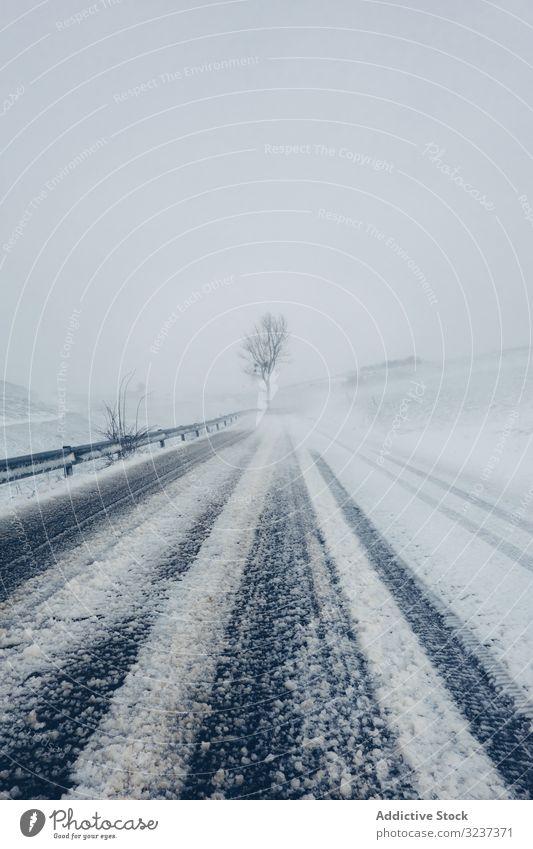 Winter verschneite leere Landstraße Straße Schnee wolkig trist Wald Baum gefroren kalt neblig Natur Reise Saison Frost Nebel Wetter bedeckt weiß Landschaft Weg