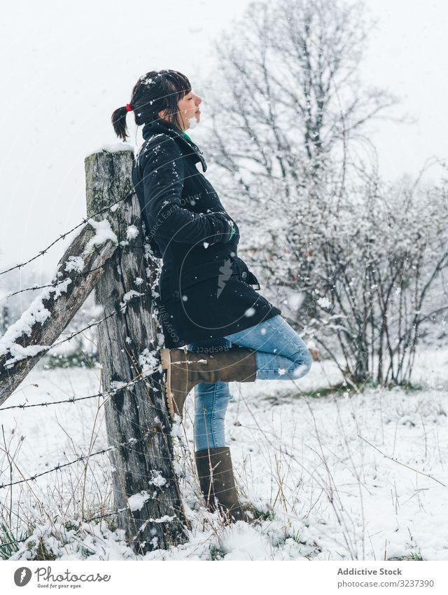 Junge Frau genießt Schneetag auf dem Land Feld Erholung Windstille genießen Winter Wald neblig wolkig trist jung allein Lehnen nachdenklich träumend Baum