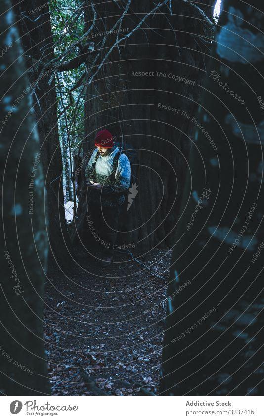 Mann neben grünem Baum mit Mobiltelefon Berge u. Gebirge Berghang Kofferraum Wald erkunden Rucksack reisen Abenteuer Wanderer Tourist Reise Trekking Pflanze
