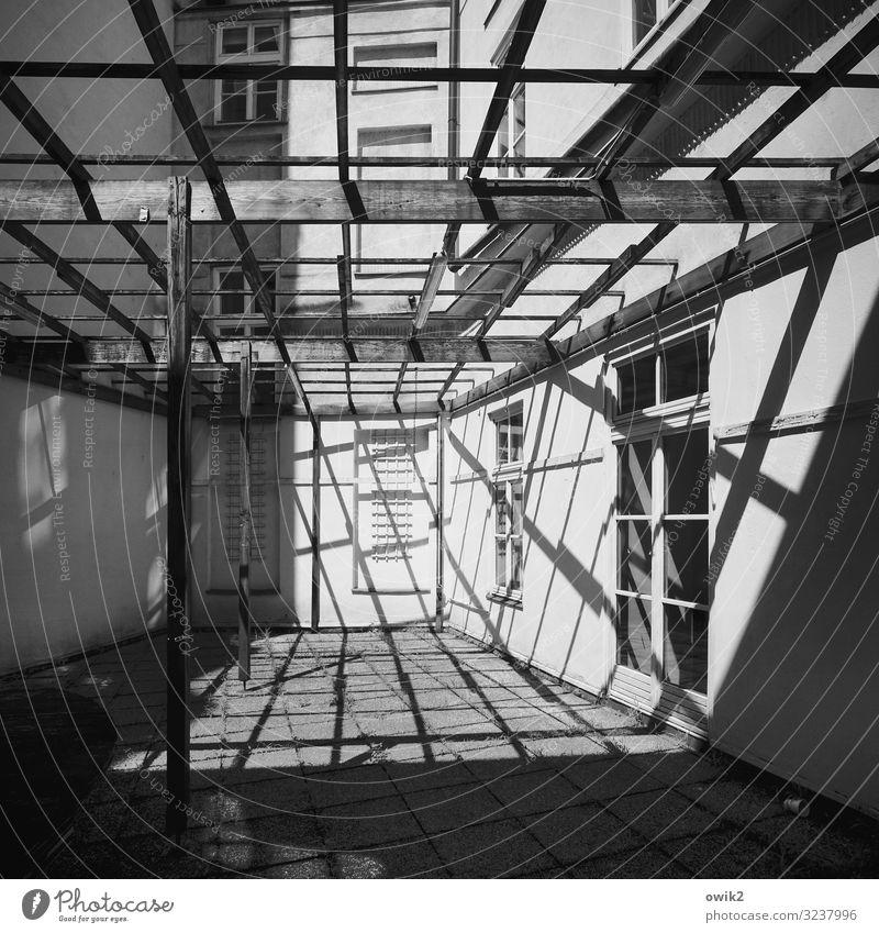 Lichte Höhe Wien Hauptstadt Stadtzentrum Haus Gebäude Mauer Wand Fassade Fenster Pergola Holz einfach fest hell Gerüst Schatten Linie Holzbrett Konstruktion
