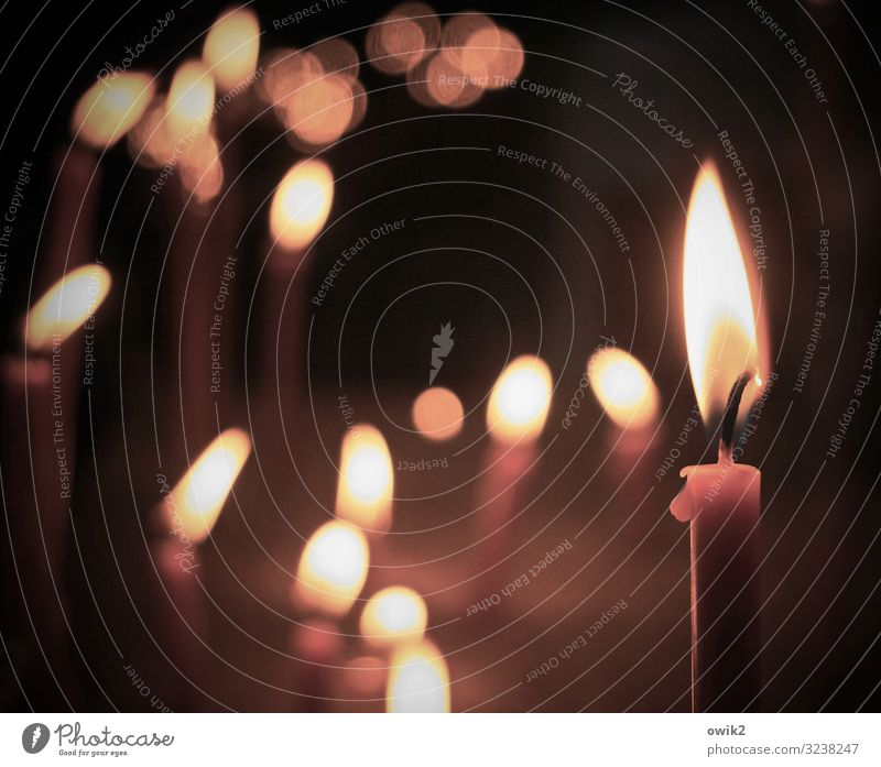Stille Fürsprache ruhig Religion & Glaube Zusammensein leuchten Kirche Idylle Ewigkeit Kerze Hoffnung Trauer viele Gelassenheit Sorge Dom Flamme