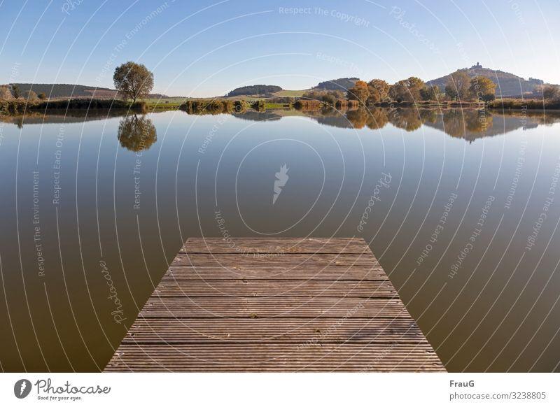 Ruhe genießen Natur Landschaft Wasser Sonnenlicht Herbst Schönes Wetter Baum See Thüringen Burg oder Schloss Wachsenburg atmen Erholung ruhig Steg