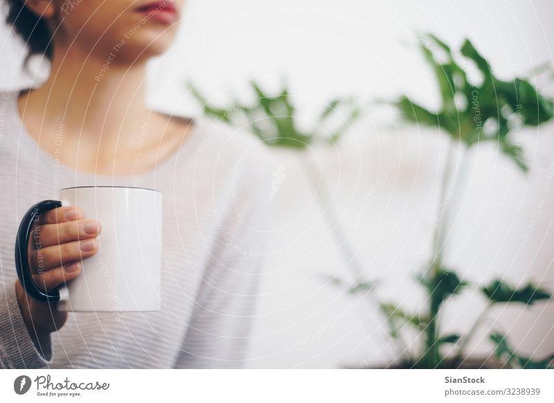 Handgehaltene Kaffeetasse Tee Topf Lifestyle Erholung Winter Frau Erwachsene Pflanze Wetter Wärme Blatt Pullover heiß weich grün weiß Geborgenheit Becher Halt