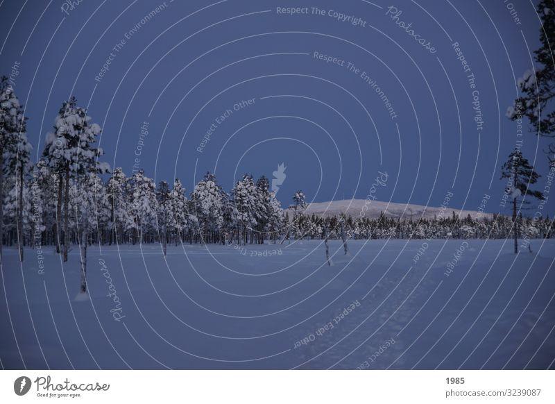 Schneelandschaft Ferien & Urlaub & Reisen Ausflug Abenteuer Ferne Freiheit Sightseeing Winter Winterurlaub wandern Landschaft Himmel Wolkenloser Himmel