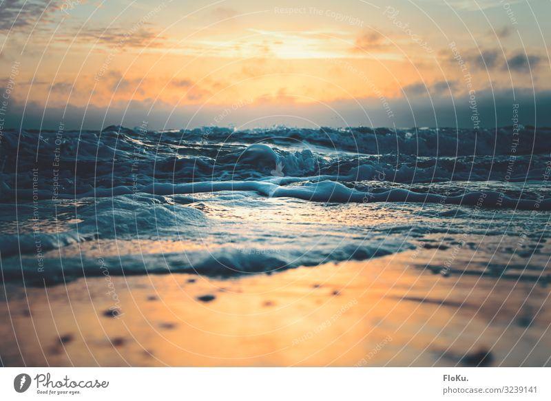 Aufgewühlt Meer wellen Sonnenuntergang Ferien & Urlaub & Reisen Tourismus Ferne Sommerurlaub Strand Umwelt Natur Urelemente Wasser Himmel Wolken Abend