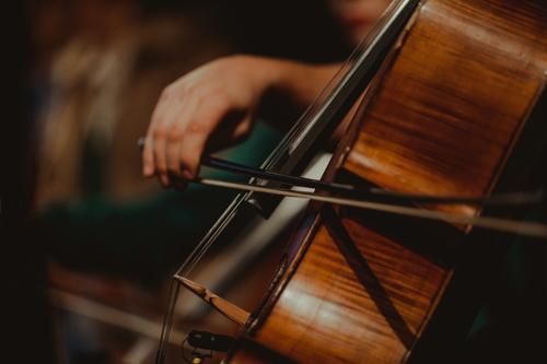 Nahaufnahme beim Cellospiel Musik Musikinstrument Musiker Saite Streichinstrumente Konzert Holz Ton musizieren Farbfoto Klang Musiknoten Orchester Innenaufnahme