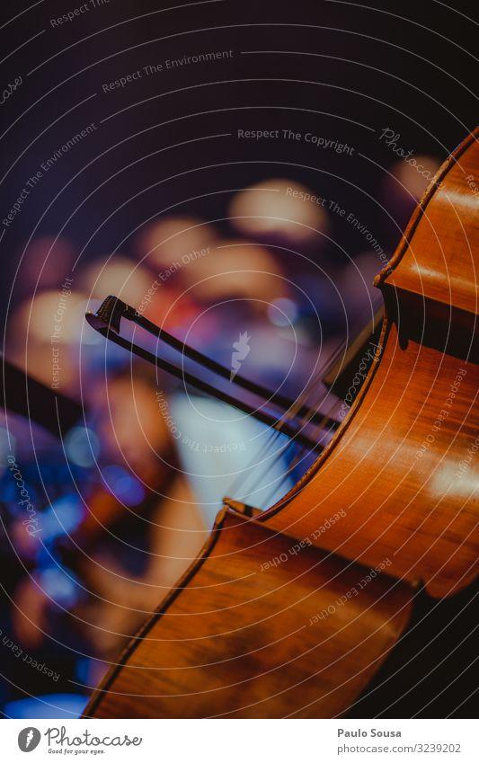 Nahaufnahme Cello Schnur Streichinstrumente live Saite Musik Holz Kunst Detailaufnahme Konzert Musikinstrument Innenaufnahme Schauplatz Gitarre Klang Geige