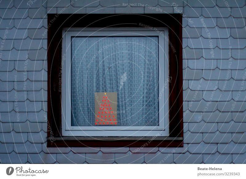 schlichte Vorfreude Feste & Feiern Weihnachten & Advent Gebäude Architektur Mauer Wand Fenster Wahrzeichen Dekoration & Verzierung Weihnachtsbaum Zeichen