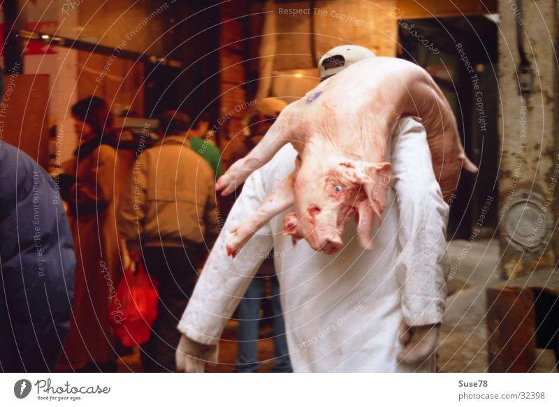 Schwein gehabt New York City Metzger Fleisch Stadtzentrum Ernährung Chinatown Tod Totes Tier Markt