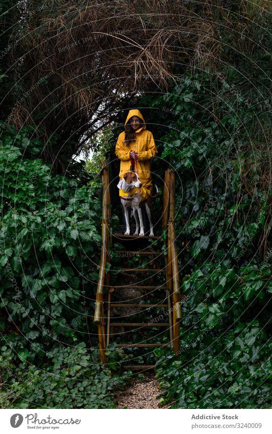 Frau in gelber Jacke mit Hund auf Treppe am Pflanzenzaun nass Zaun laufen Haustier niedlich Garten Tier Besitzer bezaubernd Hündchen Stehen heimisch grün Natur