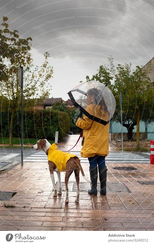 Frau geht mit Hund im Umhang auf der Straße spazieren laufen Tier Haustier Zusammensein Regen urban gelb Jacke Kapuze Freundschaft Begleiter anleinen lässig