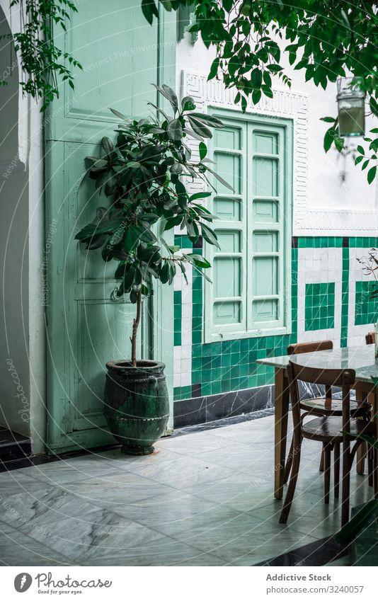 Außenansicht eines grünen arabischen Cafés Topf Baum Tisch Stuhl Außenseite Straße Marrakesch Marokko Pflanze Wachstum Restaurant Vegetation Blatt Dekor Fenster