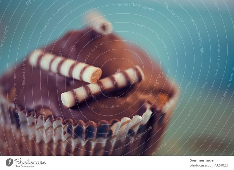 Lecker! schön weiß ruhig Lebensmittel braun Ernährung Lebensfreude rund süß lecker Getreide Süßwaren Leidenschaft Appetit & Hunger Kuchen Backwaren