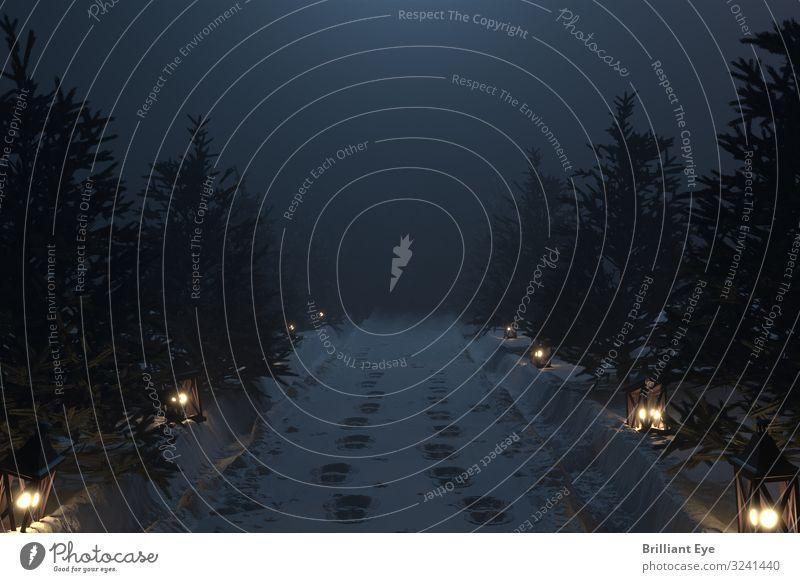 Stille Nacht Ferien & Urlaub & Reisen Winter Schnee Weihnachten & Advent Natur Landschaft Nebel Park Menschenleer Stiefel Laterne laufen kuschlig natürlich weiß