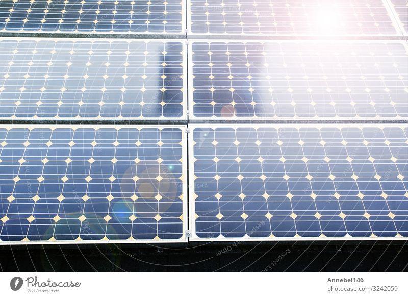 Textur des Solarpanelhintergrunds von Photovoltaikmodulen, schön Sommer Sonne Wissenschaften Industrie Business Technik & Technologie Umwelt Natur Pflanze