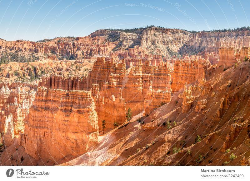 Majestätische Hoodoos im Bryce Canyon, Utah, USA Ferien & Urlaub & Reisen Berge u. Gebirge Natur Landschaft Himmel Park Felsen Schlucht Denkmal Stein gold rot
