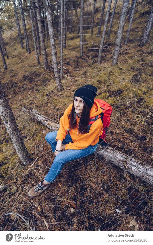 Wanderin sitzt auf umgestürztem Baum im Herbstwald Wanderer Sitzen Wald Gleichgewicht gefallen Totholz Frau Wälder entspannend gestreckte Arme entspannt