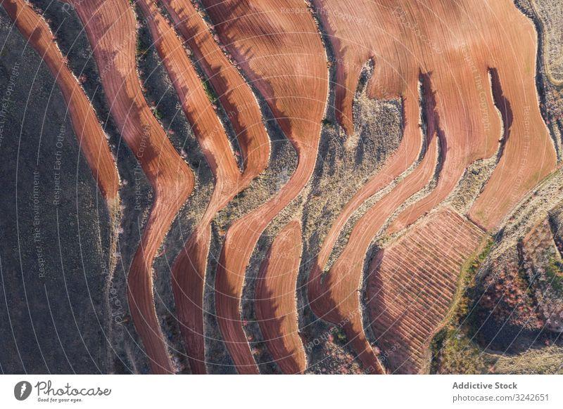 Trockene Terrassen von oben Gartenbau natürlich trocknen Saison Berge u. Gebirge Antenne landwirtschaftlich Landschaft Umwelt Natur Ernte Landwirtschaft